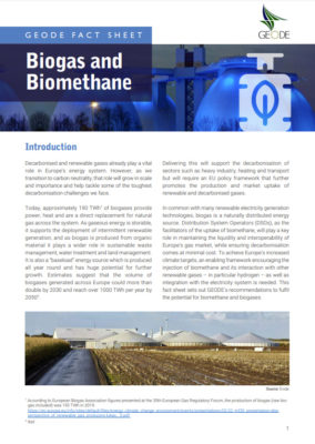 GEODE Fact Sheet on Biogas and Biomethane